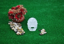 Singing Crystal quartz Skull