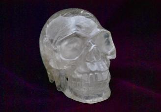 Cr skull