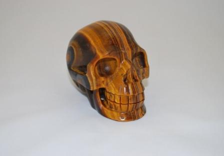 Tiger eye Skull