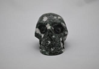 Preseli Bluestone skull 1065 (1)